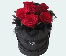Heart Hatbox of 6 fresh red roses with black feathers and heart detail. FREE Delivery North Shore Auckland.
