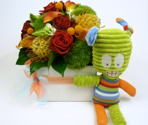 Newborn Baby Gift Basket for Baby Boy. Free Delivery North Shore Maternity Hospital Auckland
