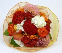 Posy of bright flowers in oranges and whites. Flower Delivery North Shore Auckland.