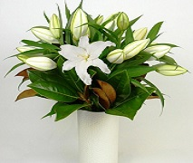 White vase of fragrant white lillies free delivery Auckland wide.