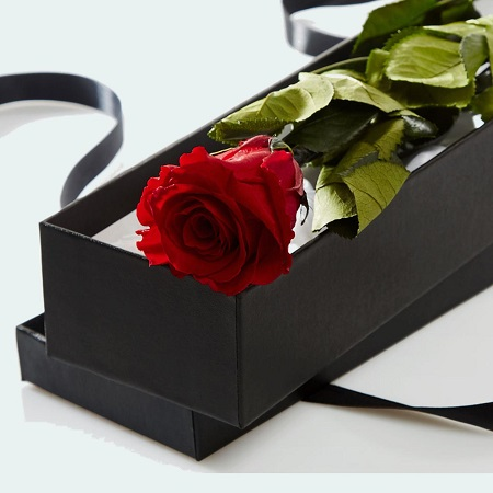 Cupid Single Red Rose in Box