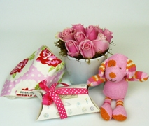 New Baby Gift Set for Baby Girl. Free Delivery North Shore Hospital Auckland