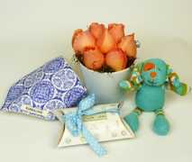 New Baby Gift Set for Baby Boy. Free Delivery North Shore Hospital Auckland