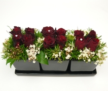special rose gift. One dozen red roses luxury presentation in ceramic cube trio.